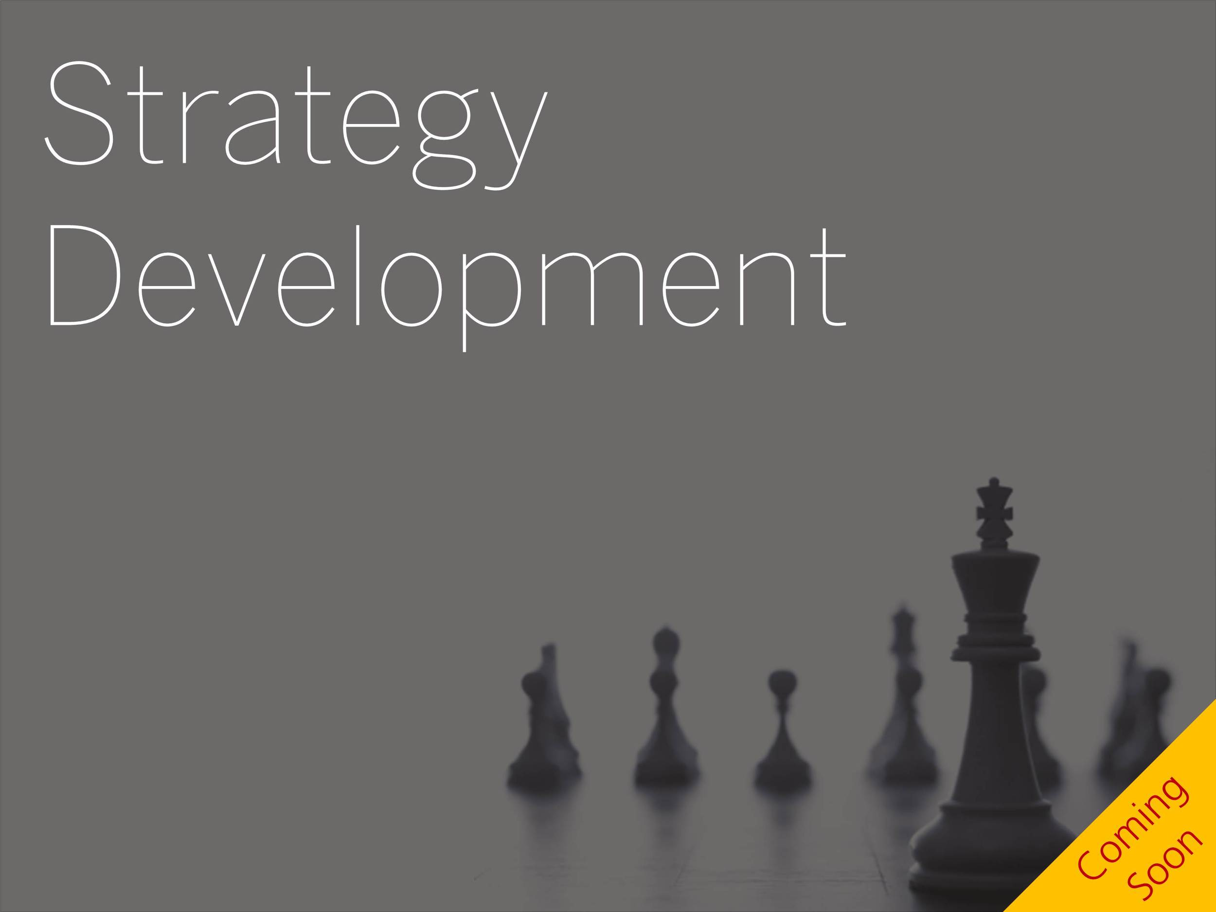 This Point of View provides a perspective on how to meet the future and develop a strategy It outlines a methodical approach to defining the future state and how to get there