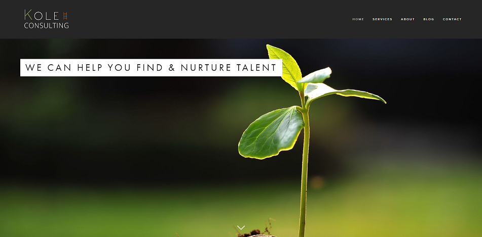 A website we developed for a Consulting firm.   View full website