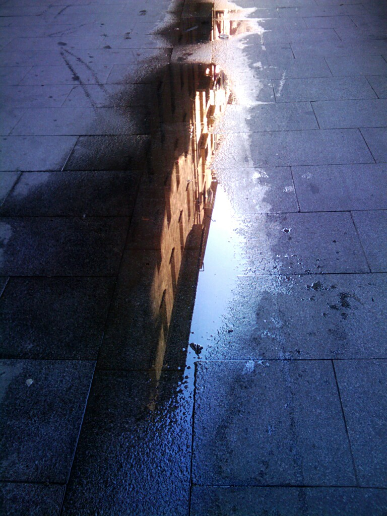 365 Day.210 Puddle.jpg