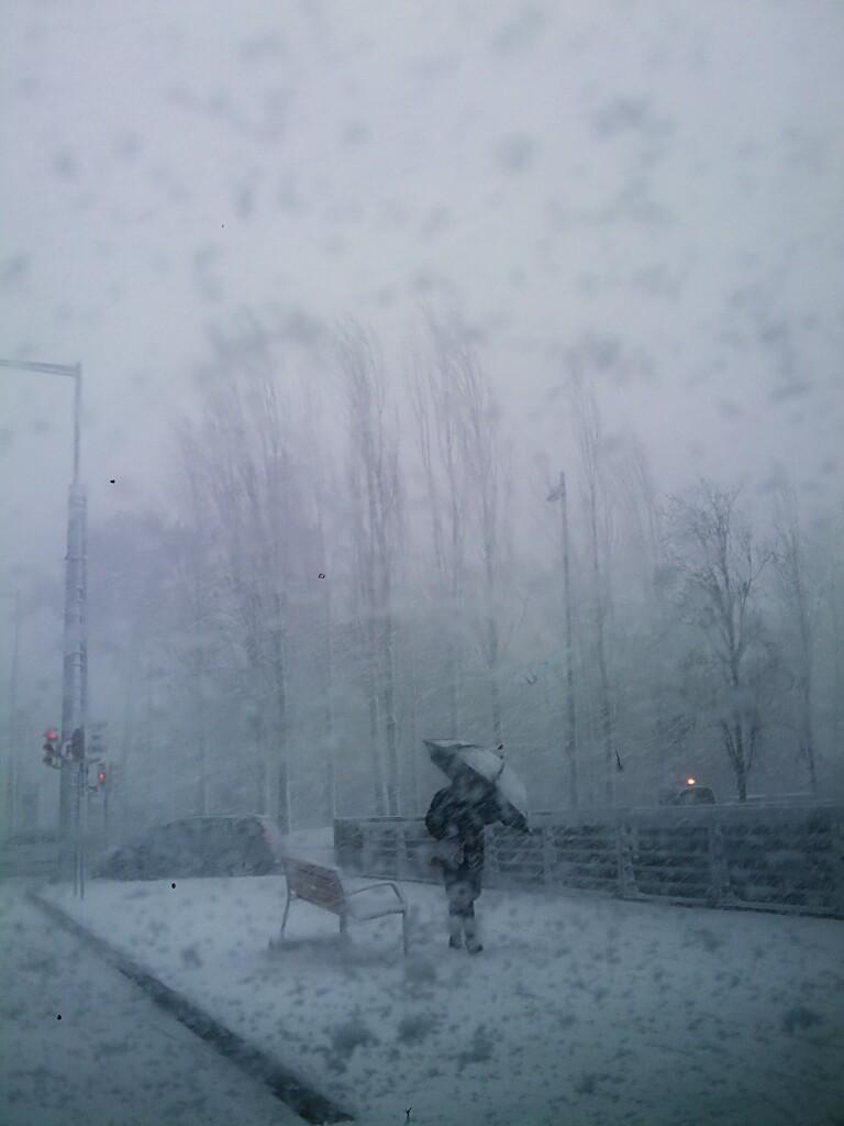 365 Day.262 Snow.jpg