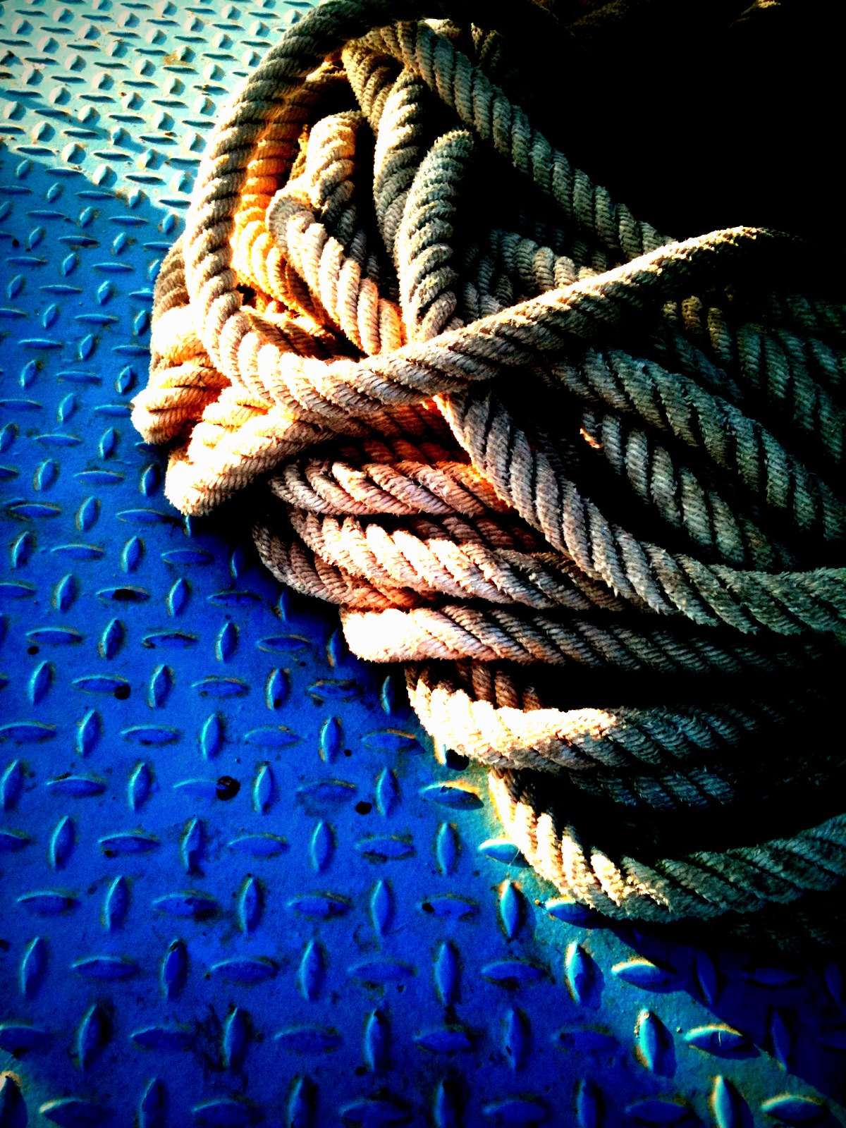 365 Day.301 Rope.JPG