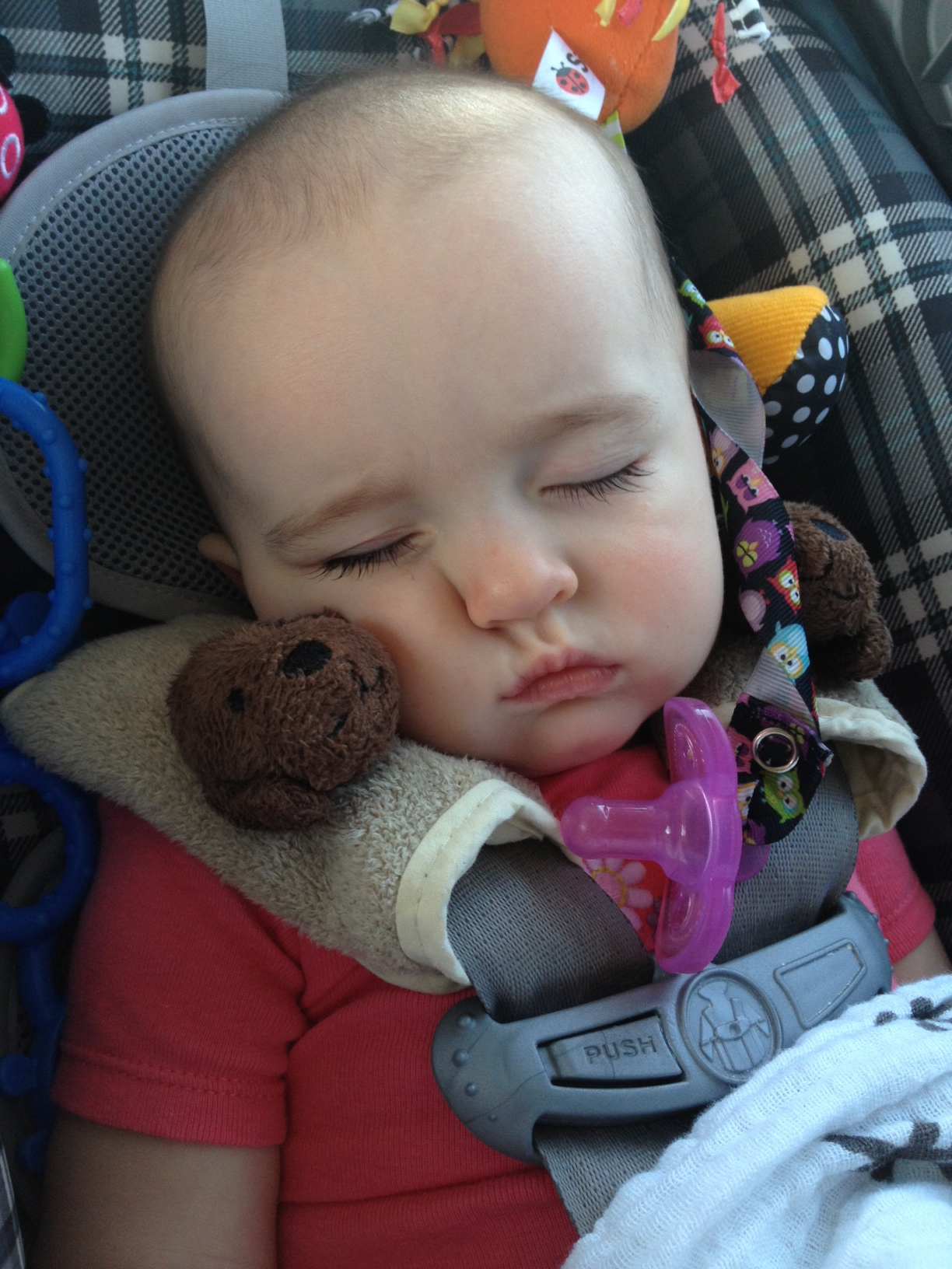 """the ubiquitous """"napping in the car"""" shot"""