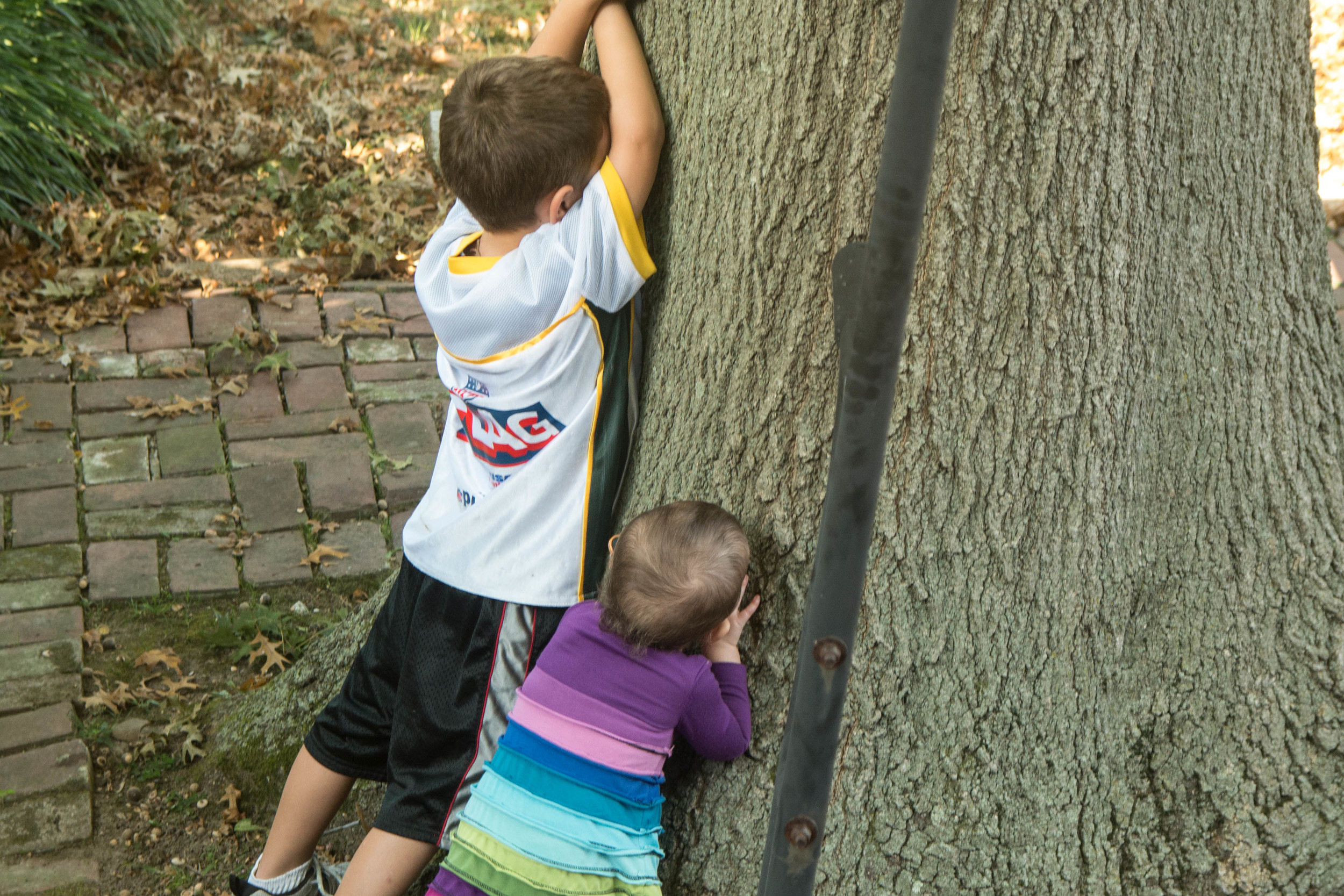 learning to count for hide & seek