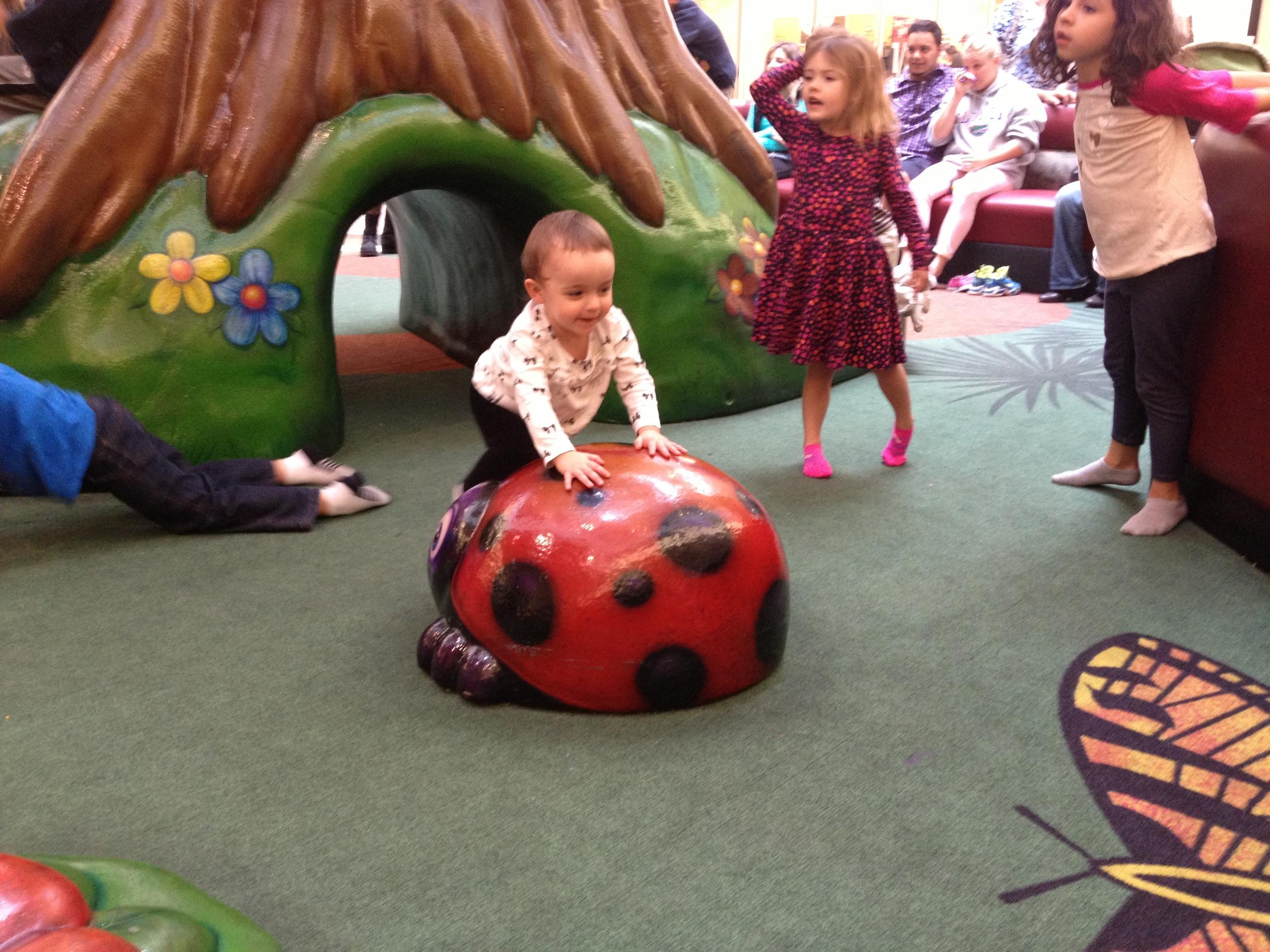 Climbing the Ladybug