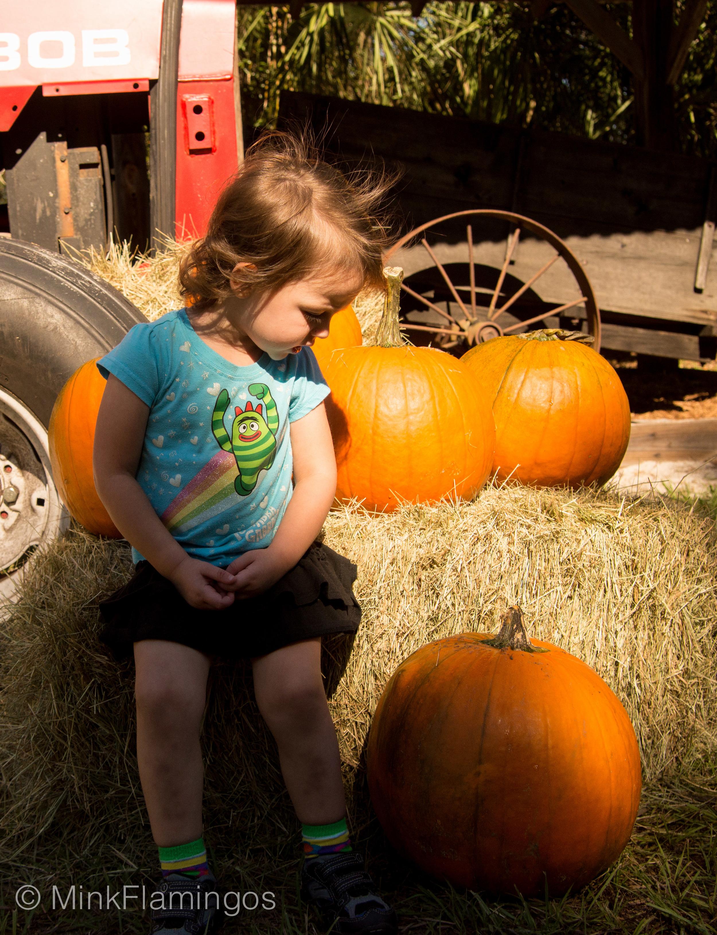 2014_Oct_farmersmarket-3.jpg