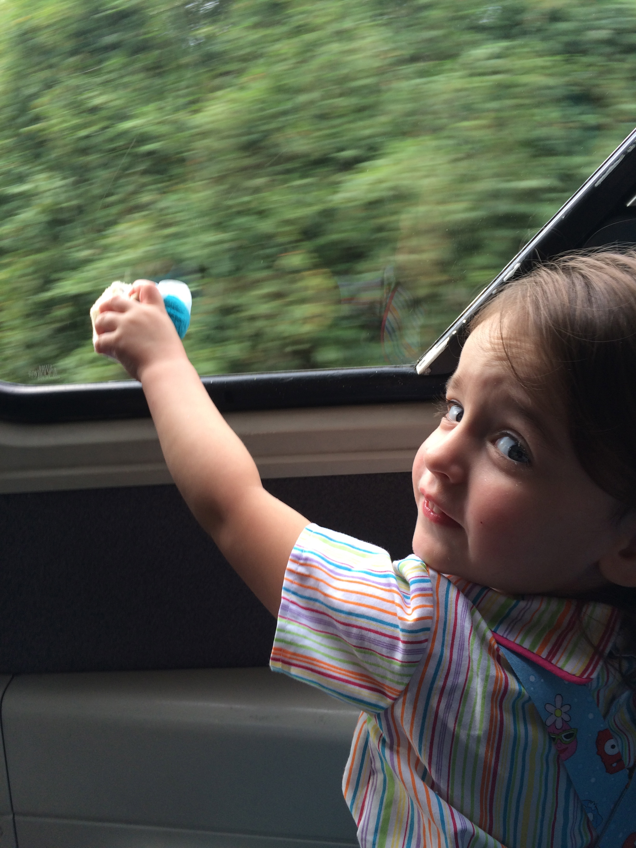 Showing Elsa Tsum the view from the monorail