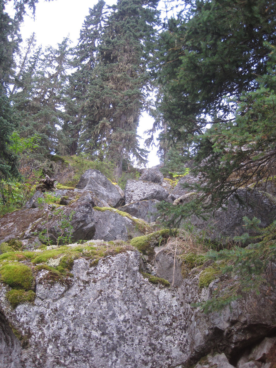 lovely_mossy_boulders_on_approach_USE.jpg