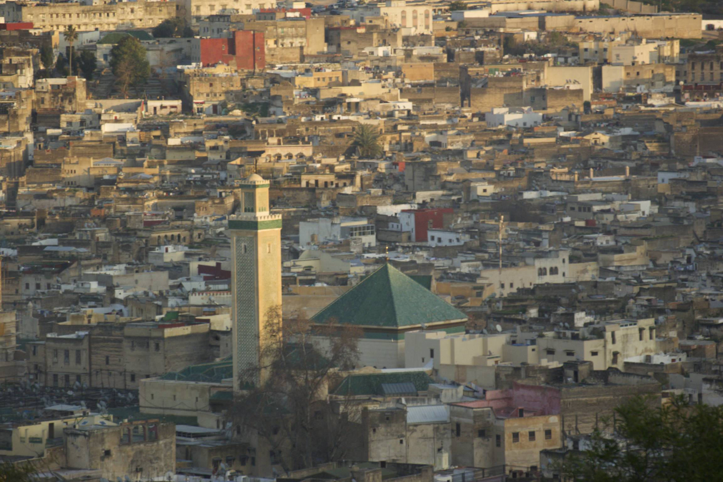 Fez medina from a nearby hill. University in the foreground with the green roof.