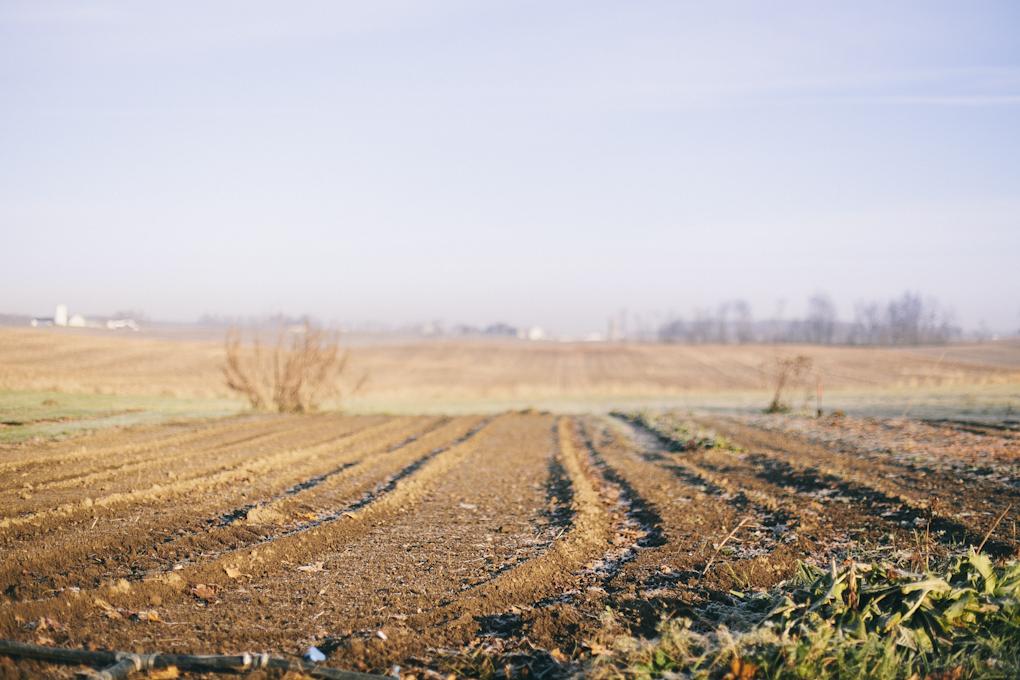 2012_farmblg1_ (1 of 16).jpg
