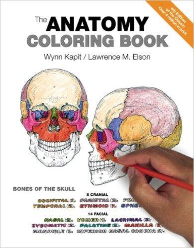 anatomy coloring.jpg