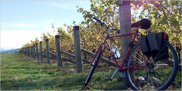 bike wine tour.jpg