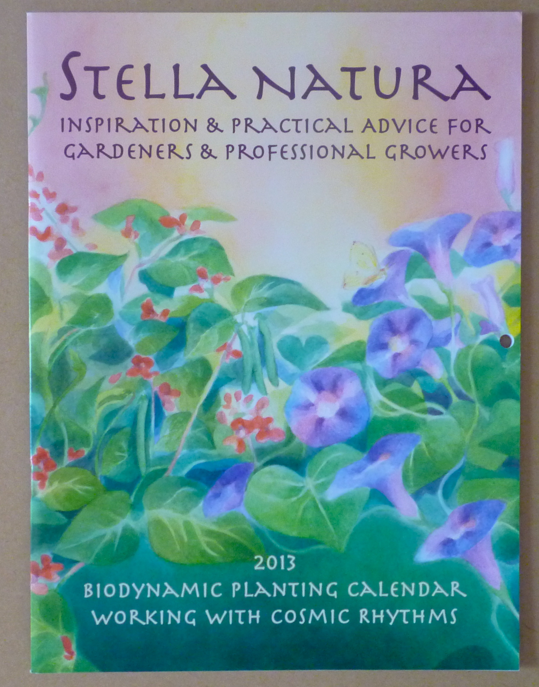 2013 Stella Natura Cover Illustration Ella Lapointe
