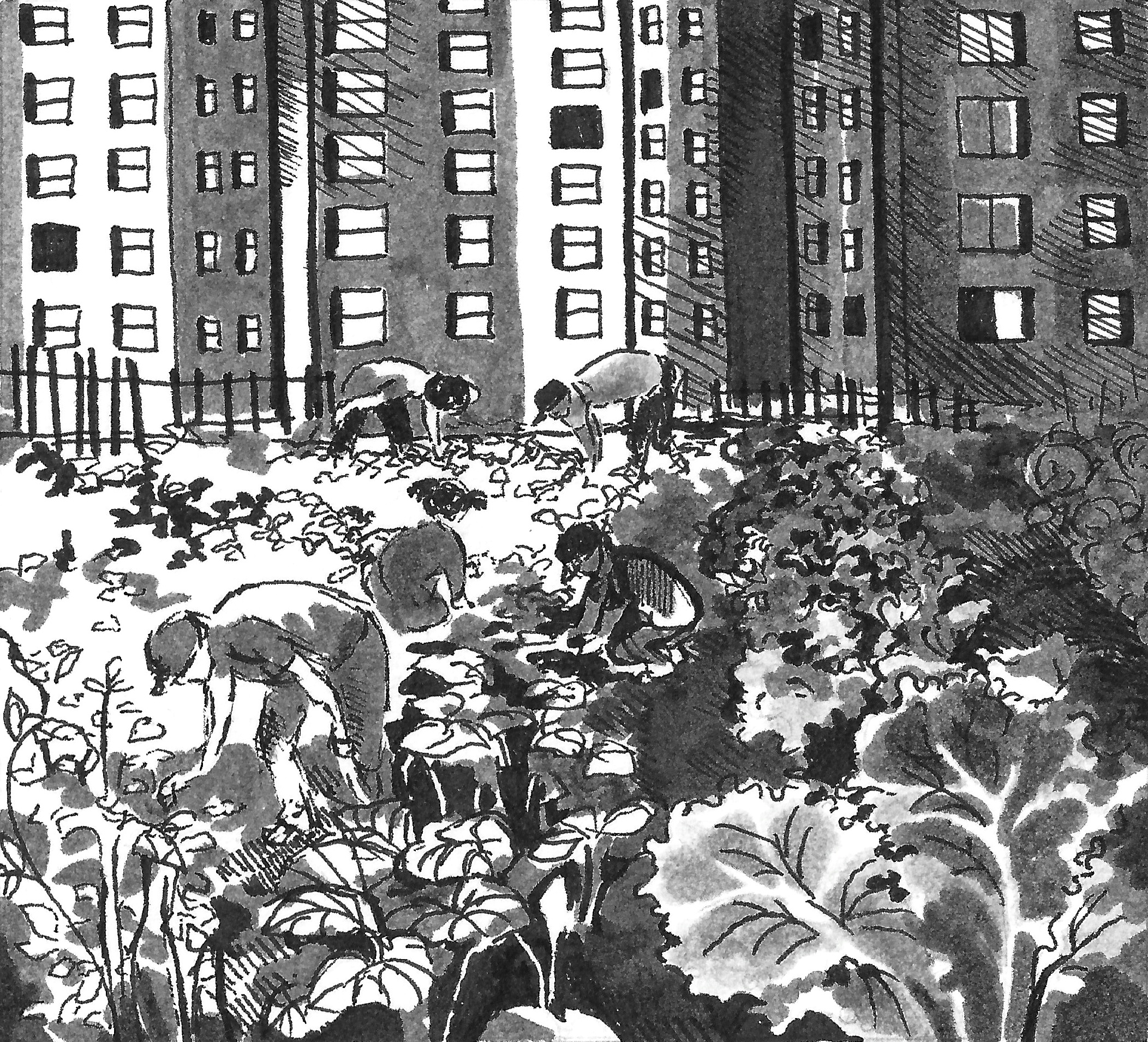 Urban Gardening, SN 2013