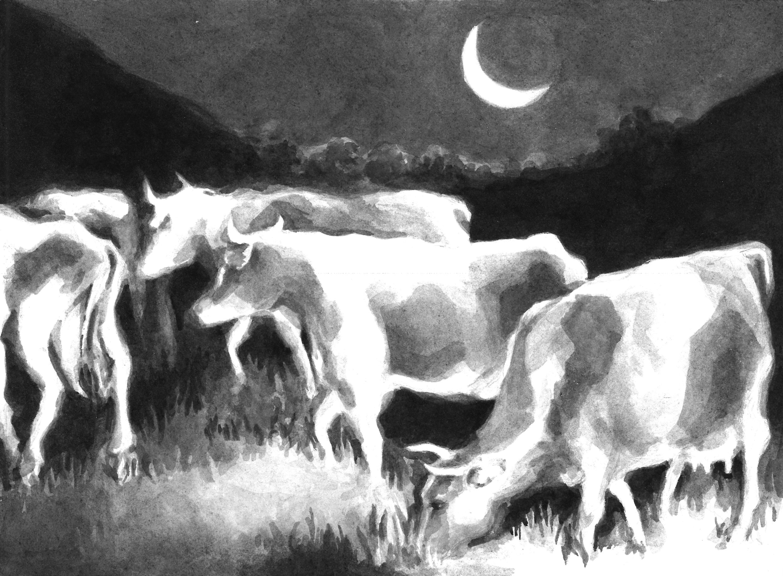 Cows in Moonlight, SN 2014