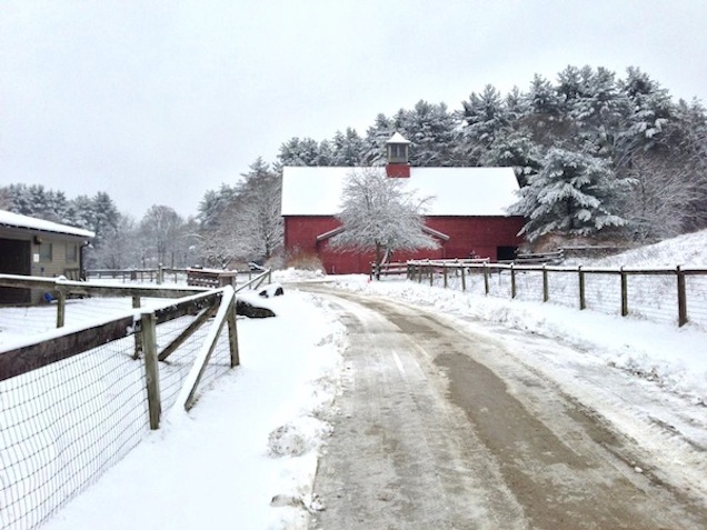Drumlin Farm, Lincoln, Massachusetts