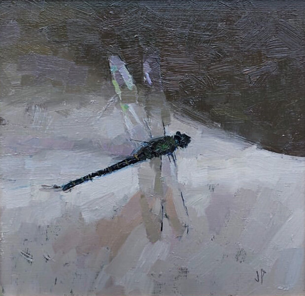 'Dragonfly 2 /19', 7.5 x 8, Oil on Panel, SOLD
