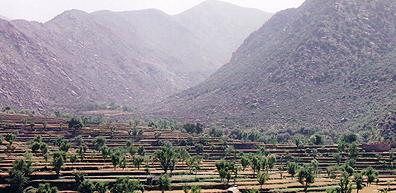 darrai_noor_landscape.jpg