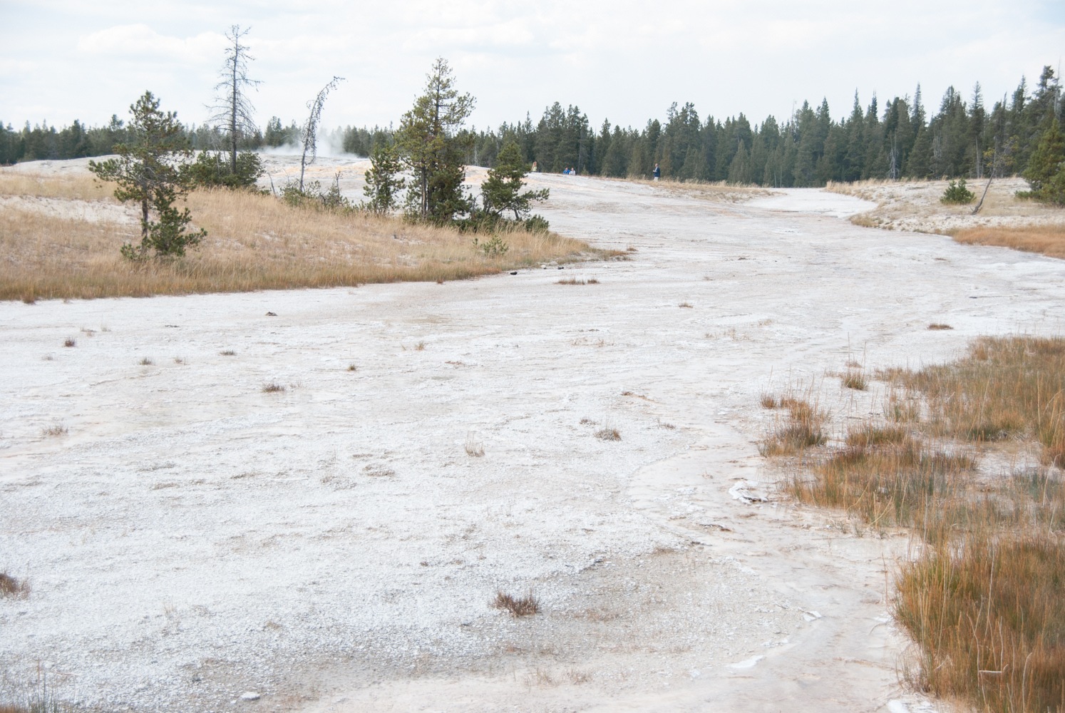 YellowstoneGrandTeton-0635.jpg
