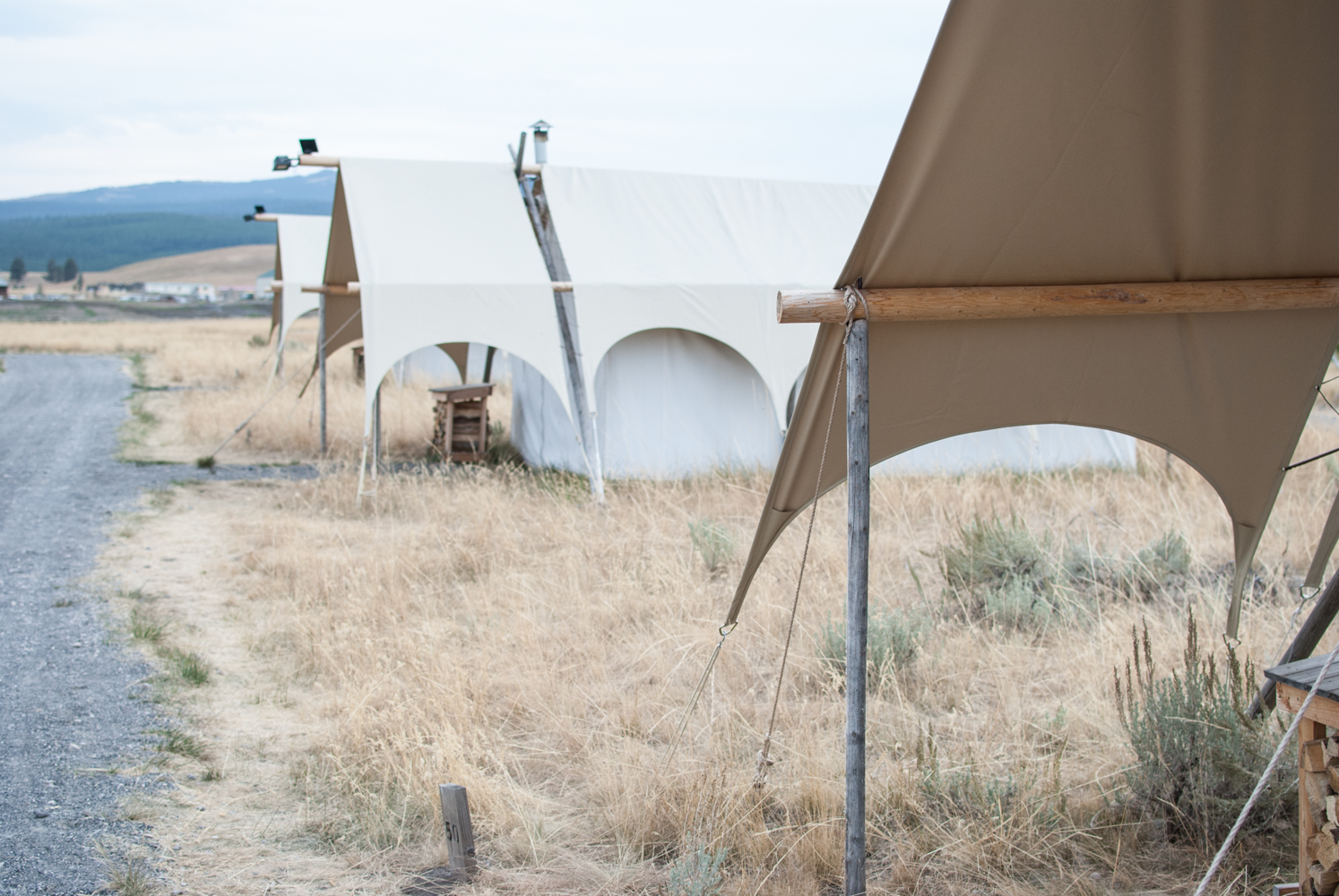 YellowstoneGrandTeton-0688.jpg