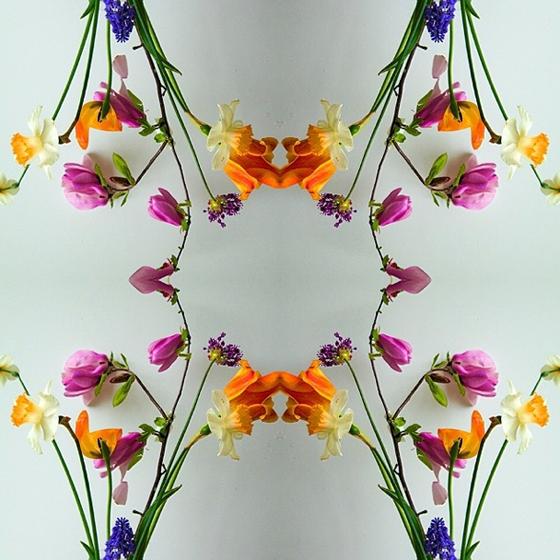 Flowers by Eberle