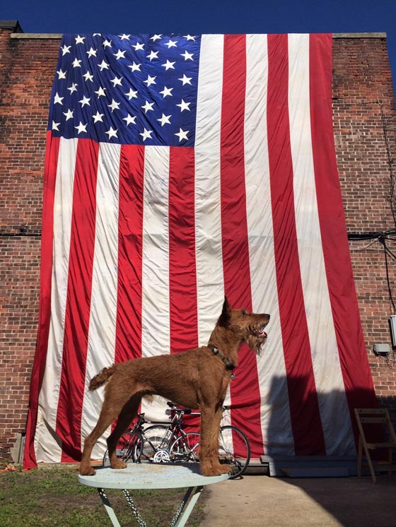 Giles's buddy, Zeiss and Giles's 40 foot Old Glory