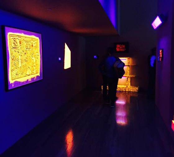 Black light room at the de Young. Photo by Julia Gruen