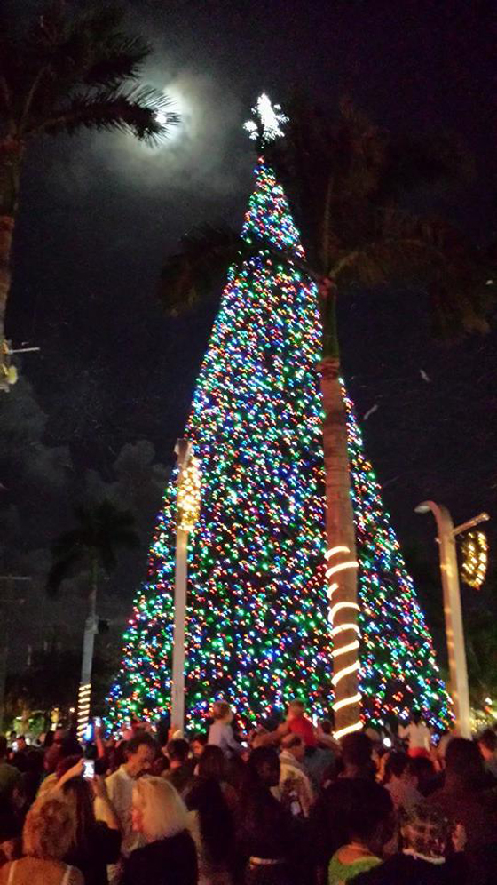It may or may not be the World's Tallest artificial tree, but at 100 feet, it's BIG!