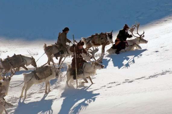 mongolia_reindeer_tribe_2.jpg