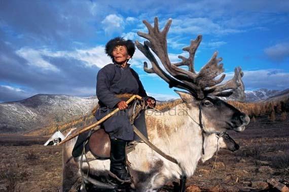 mongolia_reindeer_tribe_3.jpg