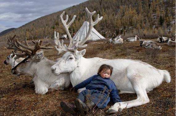 mongolia_reindeer_tribe_6.jpg