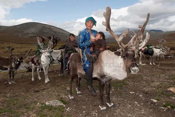 mongolia_reindeer_tribe_8.jpg