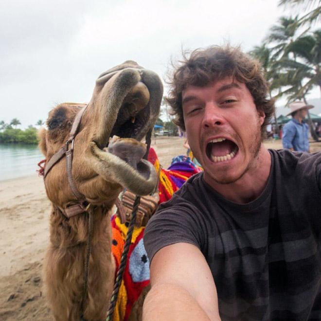 animal-selfie-camel.jpg