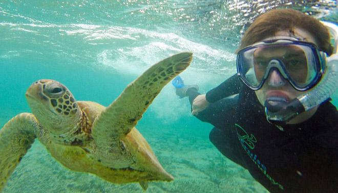 animal-selfie-turtle.jpg