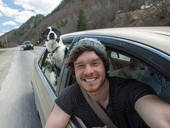 animal-selfie-wind.jpg