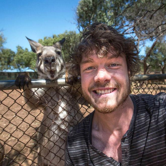 animal-selfie-zoo.jpg
