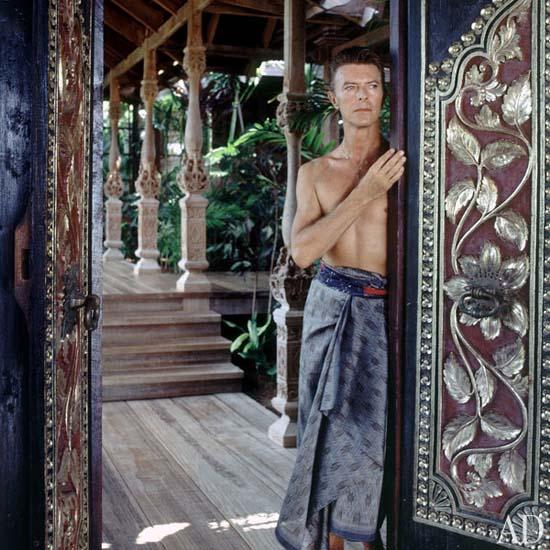 dam-images-celebrity-homes-1992-david-bowie-david-bowie-03-portrait.jpg