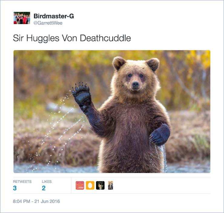 name-bear.jpg