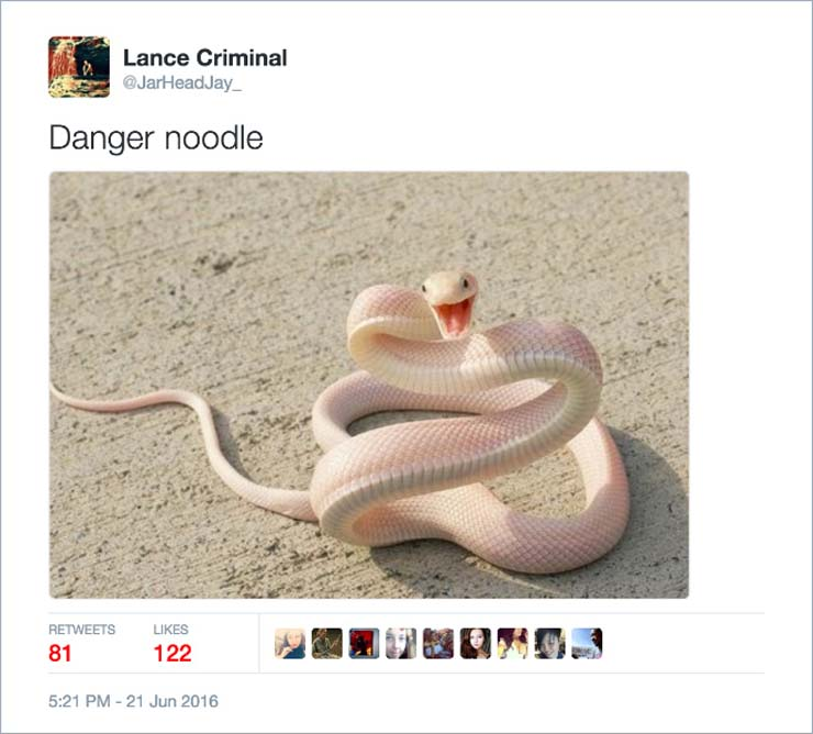 name-snake.jpg
