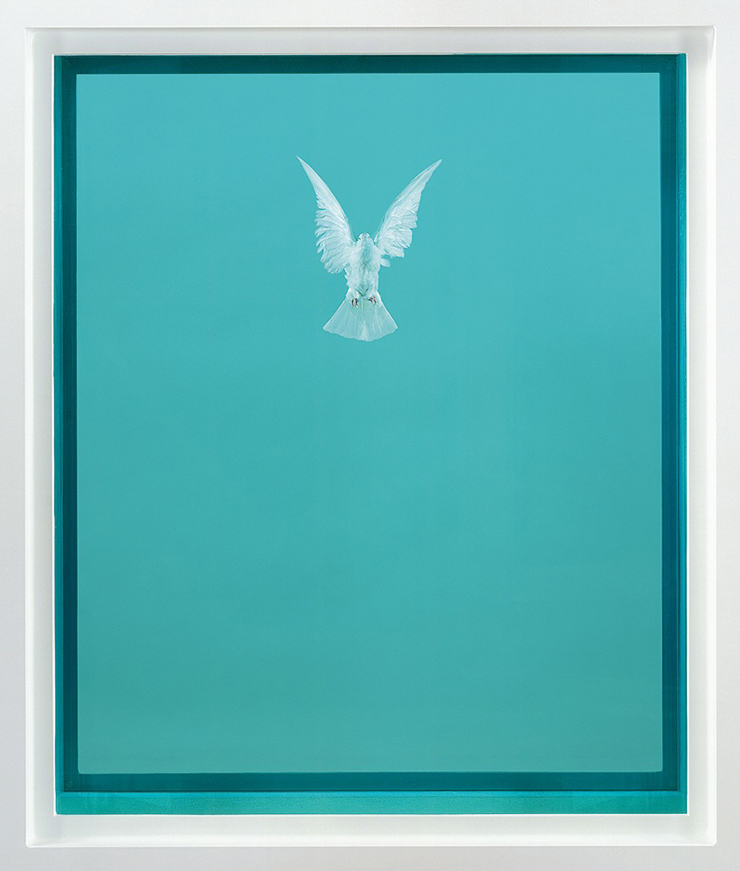 Damien Hirst, The Incomplete Truth, 2006. Glass, painted aluminium, silicone, acrylic, stainless steel, dove and formaldehyde solution
