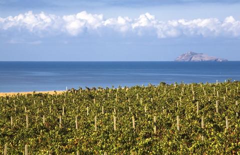 Sardegna - Vermentino di Gallura