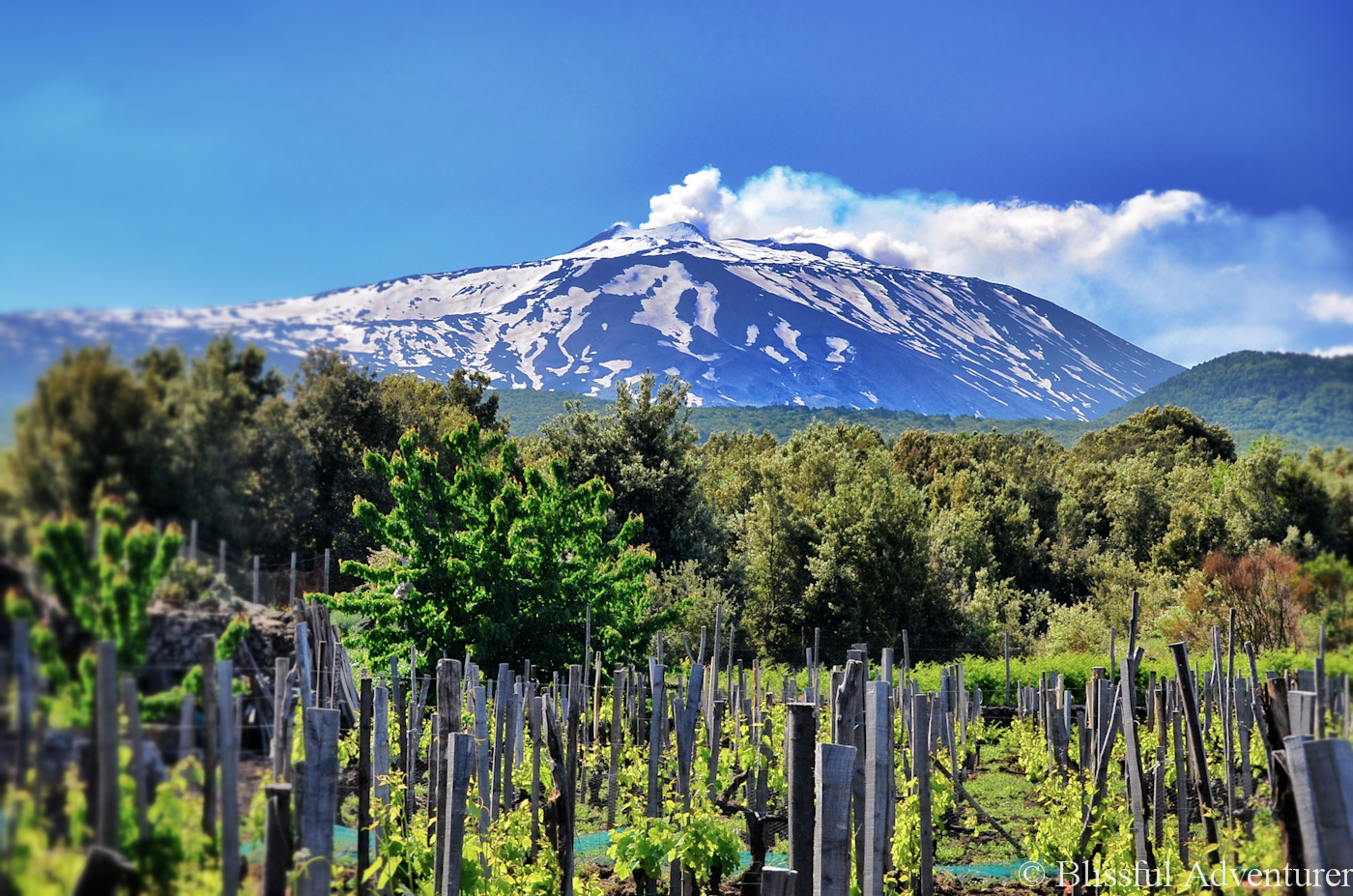 Sicily - Etna