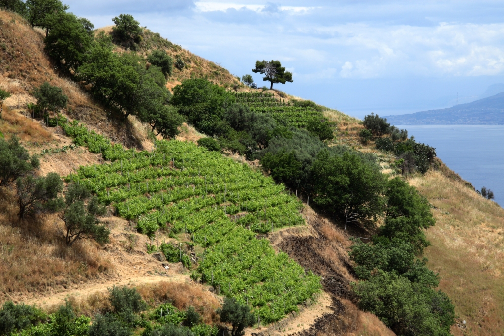 Sicily - Faro