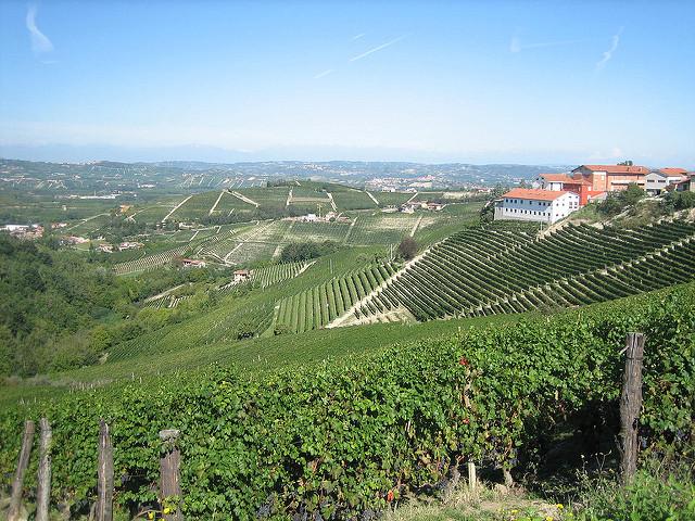 Piedmont - Barolo