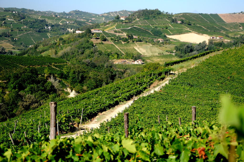 Piedmont - Asti