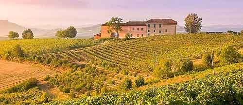 Piedmont - Brachetto d'Acqui