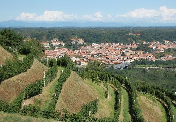 Piedmont - Gattinara