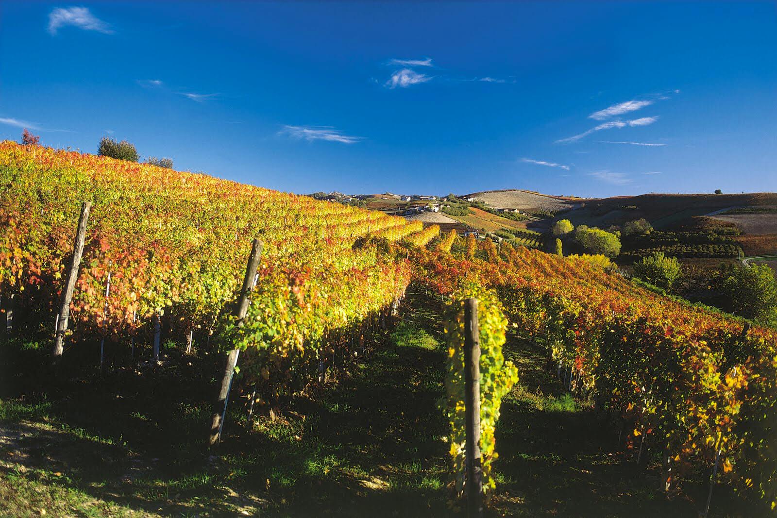 Piedmont - Ghemme