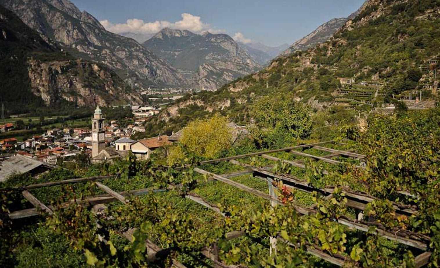 Piedmont - Carema