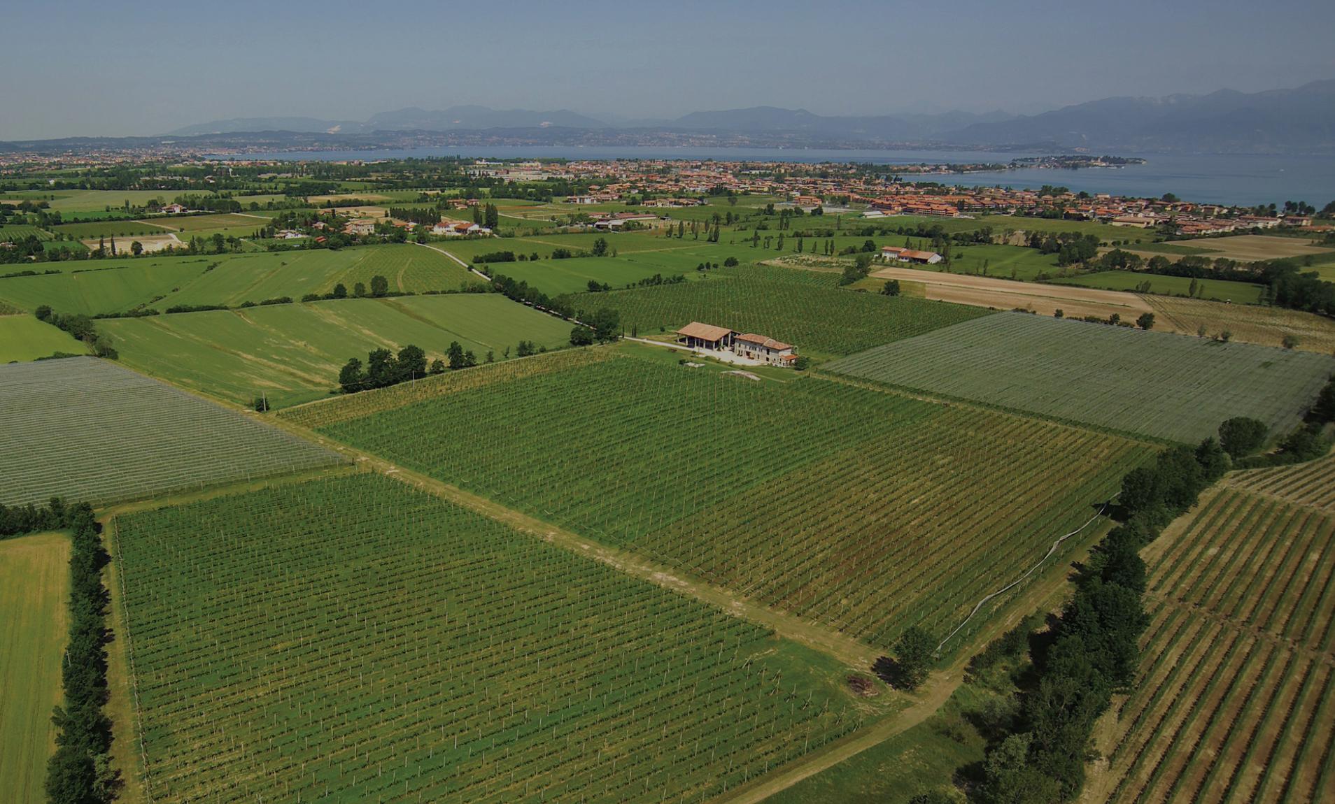 Lombardia - Lugana