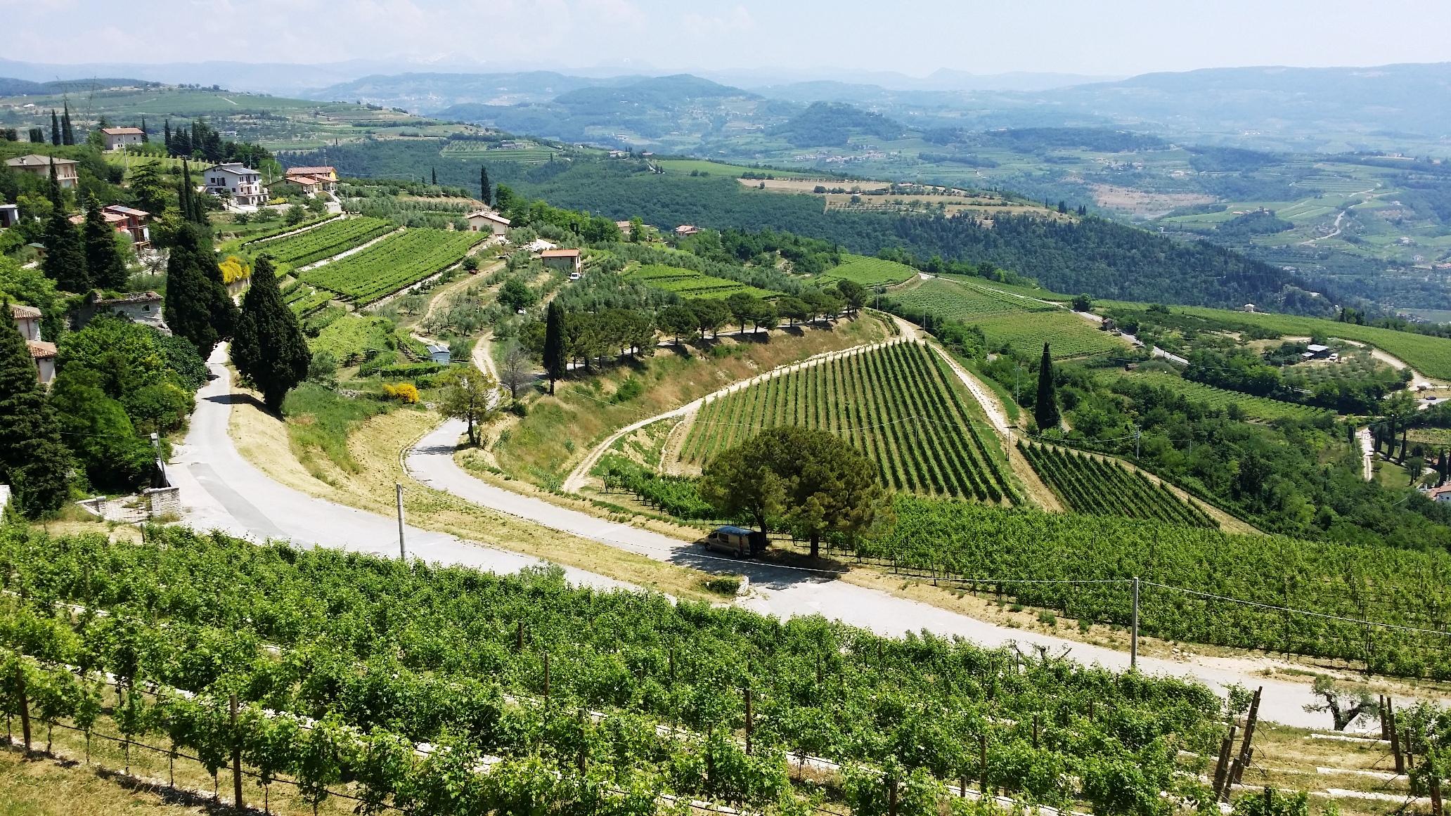 Veneto - Valpolicella